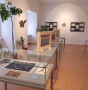Výstava knoflíků